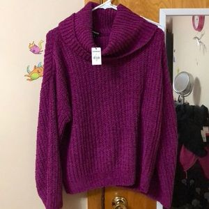 NWT Express Cozy Cowl Neck Sweater